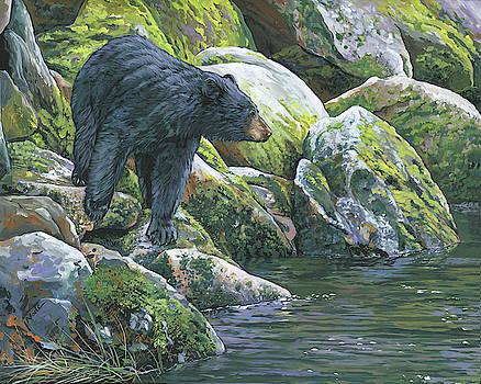 Black Bear by Nadi Spencer