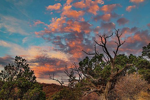 Black Canyon Sunrise by Jim Allsopp