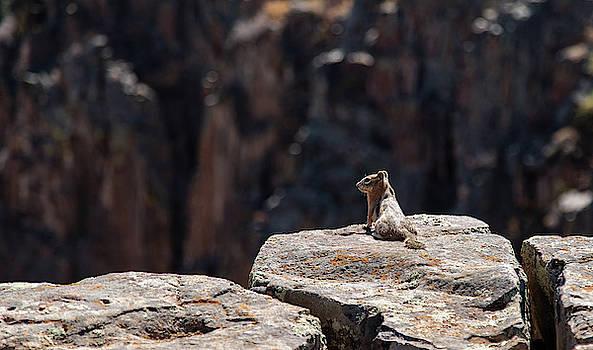 Black Canyon View by Jim Allsopp