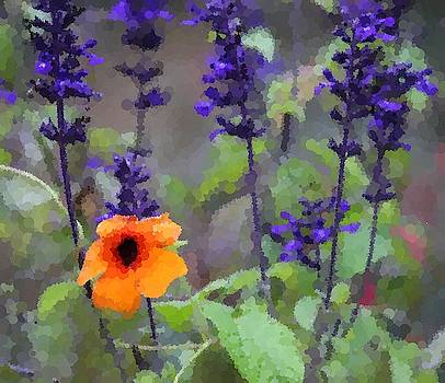 Cathy Lindsey - Black-Eyed Susan And Black And Blue Salvia 2