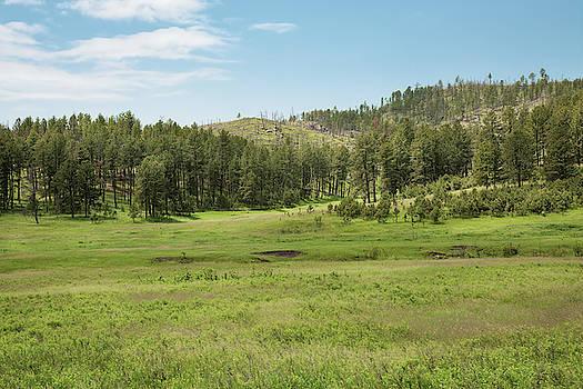 John M Bailey - Black Hills Range Land