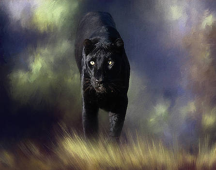 Black Leopard in the grass by Gloria Anderson