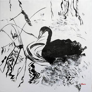 Black Swan II 201840 by Alyse Radenovic