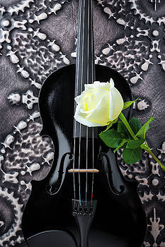 Black Violin And White Rose by Garry Gay
