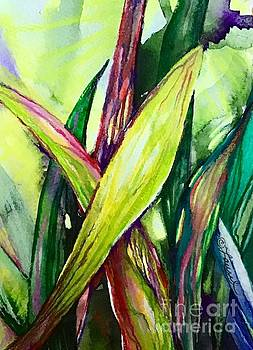 Blades of Light by Laurel Adams