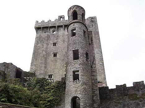 Blarney Castle 3 by Ronni Dewey