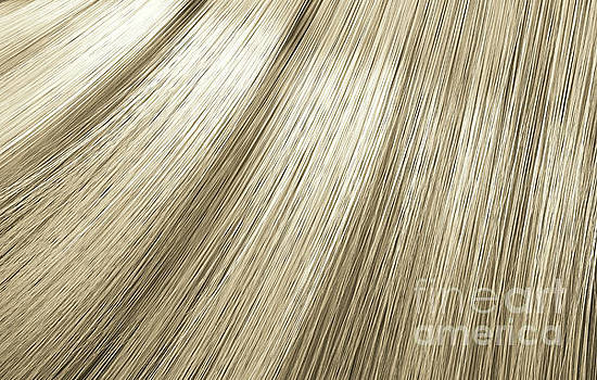 Blonde Hair Blowing Closeup by Allan Swart