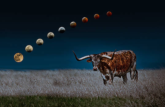 Blood Moons in a Texas Sky by Linda Unger