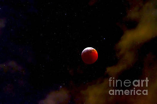 Red Wolf Moon by Sherry Little Fawn Schuessler