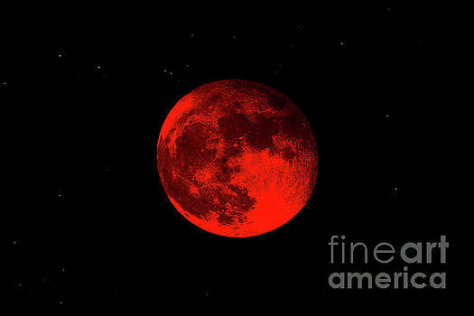 Ricardos Creations - Blood Red Wolf Supermoon Eclipse 873A
