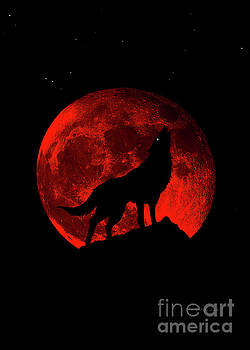 Ricardos Creations - Blood Red Wolf Supermoon Eclipse 873j