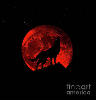 Ricardos Creations - Blood Red Wolf Supermoon Eclipse 873l