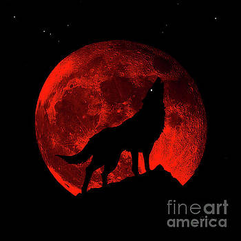 Ricardos Creations - Blood Red Wolf Supermoon Eclipse 873m