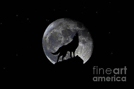 Ricardos Creations - Pre Blood Red Wolf Supermoon Eclipse 873p