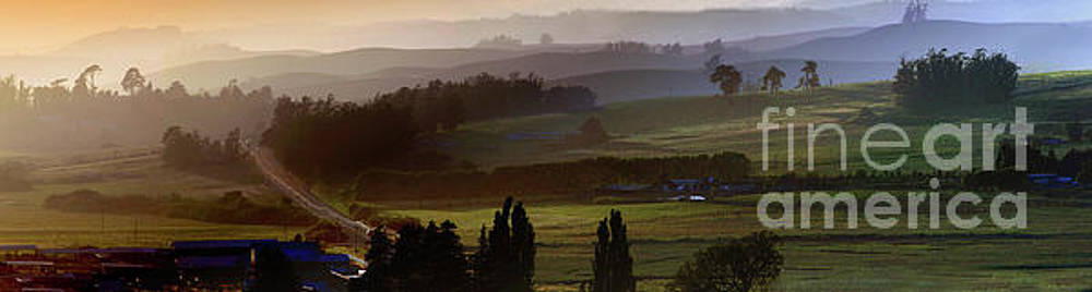 Bloomfield Valley Panorama, Sonoma County by Wernher Krutein