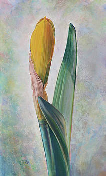 Blooming  by Nick Payne