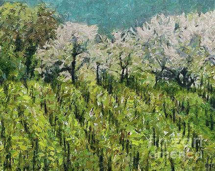 Blossoming Cherries by Dragica Micki Fortuna