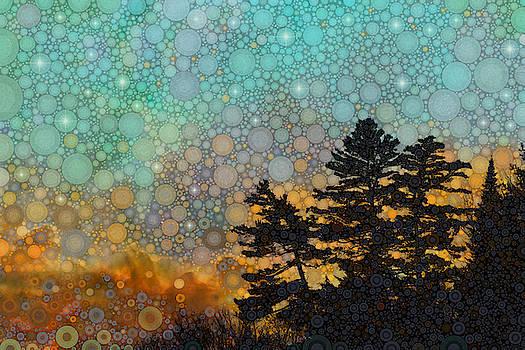 Blue Adirondack by Daniel McPheeters