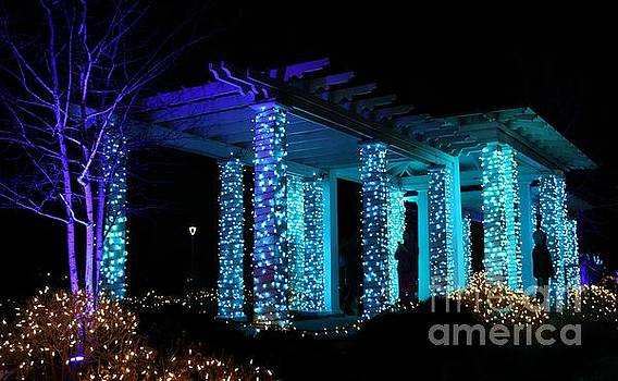 Blue and Purple Pergola by Denise Irving