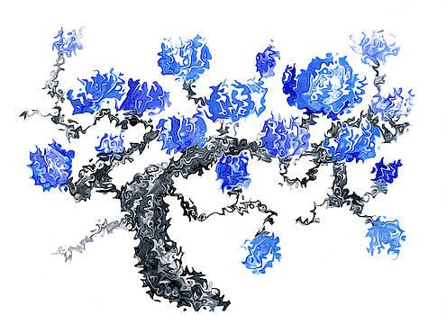 Blue blossoms by Steve Clarke