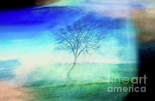 Blue Branches by Glennis Siverson