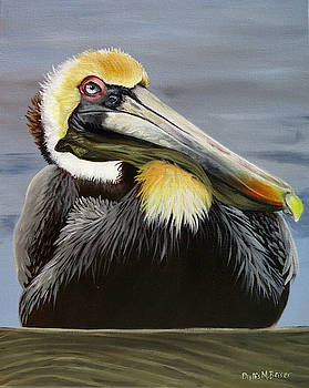 Blue Eyed Pelican by Phyllis Beiser