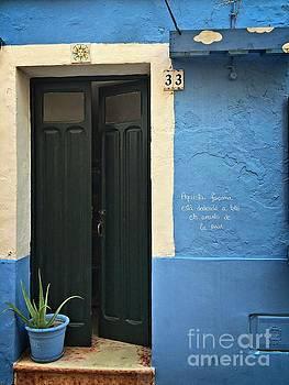 Dee Flouton - Blue Facade Green Door Flower Pot