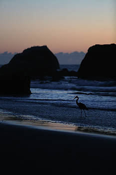 Blue Heron at Dusk by Fred Hood