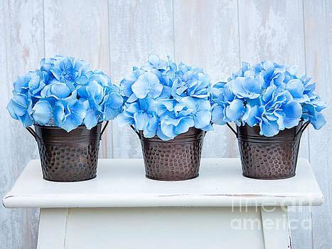 Blue Hydrangea by Kristi Cromwell