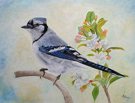 Blue Jay Among Apple Blossoms by Angeles M Pomata