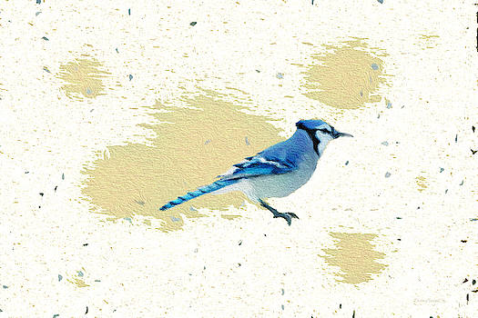 Blue Jay and Paint Splashes by Diane Lindon Coy