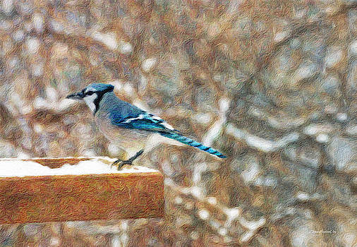 Blue Jay Morning by Diane Lindon Coy