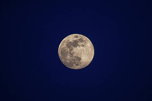 Blue Moon Rising by David Stasiak