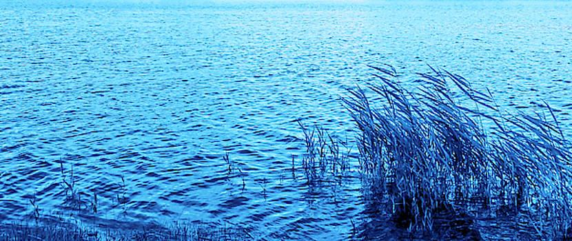 Blue Morning Hour By The Seashore  by Johanna Hurmerinta