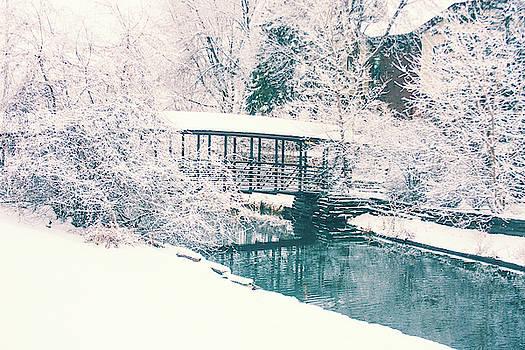 Blue snow day by Angela King-Jones