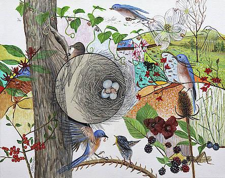 Bluebird Habitat by Trena McNabb