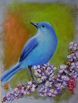 Bluebird on a Branch by Melinda Saminski