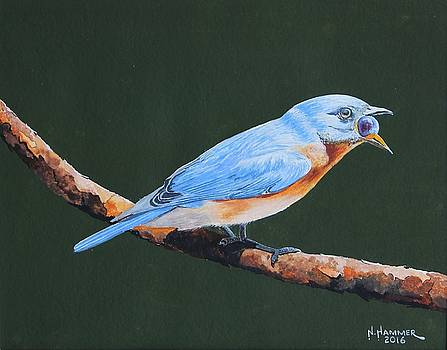 Bluebird with Blueberry by Nelson Hammer