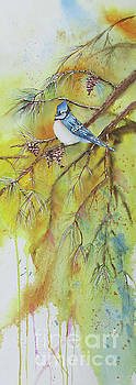 Bluejay Out On A Limb by Donlyn Arbuthnot