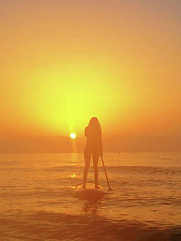 Board Girl, Morning Light by Andrew Royston