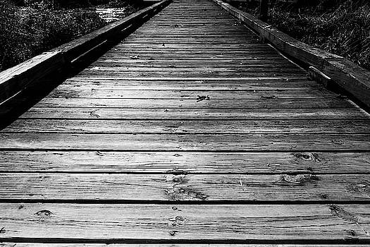 Boardwalk  by Doug Camara