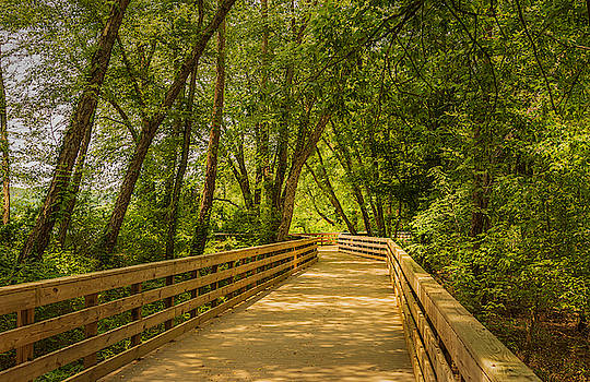 Boardwalk Through The Woods by Keith Smith