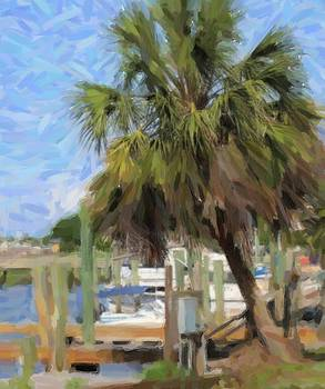 Boats And Palm Tree At Southport 5 by Cathy Lindsey