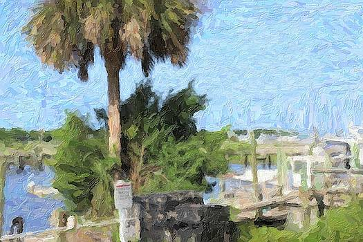 Boats And Palm Tree At Southport 8 by Cathy Lindsey
