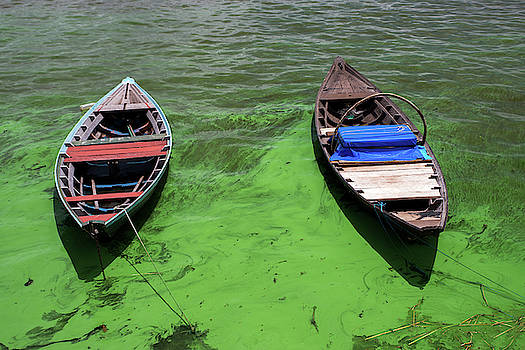 Boats on algae, in Santarem, Brazil. by Ian Robert Knight