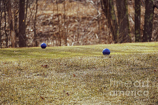 Bocce balls on grass by Claudia M Photography