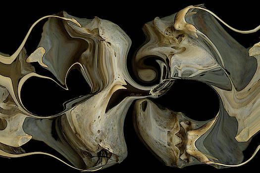 Bone Garden by Carel Schmidlkofer