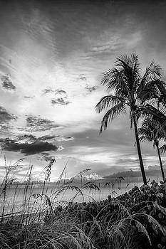 Melanie Viola - BONITA BEACH Bright Sunset - Monochrome