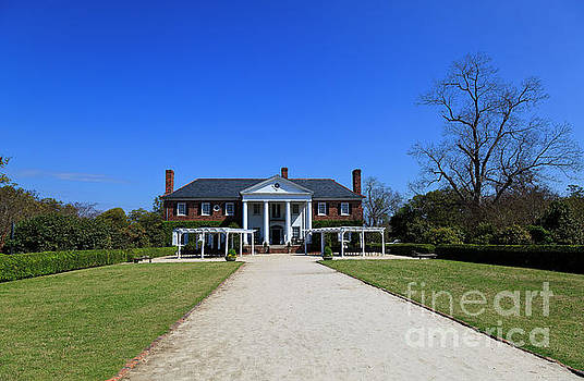 Jill Lang - Boone Hall Plantation in Mount Pleasant South Carolina