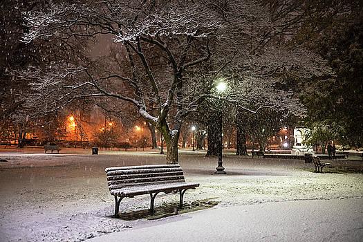Toby McGuire - Boston Snowfall in the Boston Public Garden Boston MA